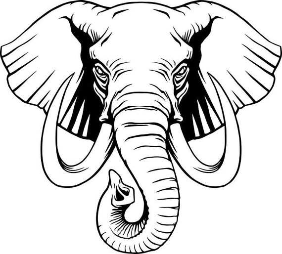 elephant 1 head tusk trunk wild wildlife african animal zoo mascot rh etsystudio com Trunk Up Elephant Side View Elephant Trunk Cartoon