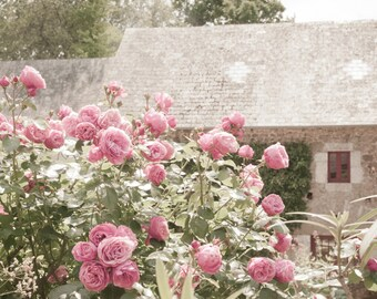 French Country Photography, Rose Garden and Cottage, Country Home Decor,  Fine Art Travel Photograph, Large Wall Art