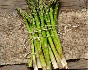 100 Mary Washington Asparagus Seed (S)