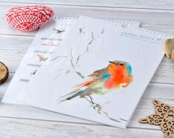 Bird Calendar - 2018 Calendar - Calendar 2018 - Bird Painting - A4 Size - Robin Calendar - Owl - 2018 Wall Planner - Calendar - Wildlife