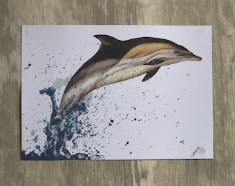 Watercolour Long-Beaked Common Dolphin Painting A5 Print Ocean Spray