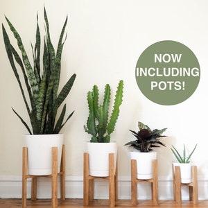 Wonderful Mid Century Modern Plant Stand, Wooden Plant Stand, Indoor Plant Stand, 6