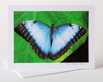 Photo Greeting Card, Photo Card, Blank Card, Nature Photo, Butterfly, Blue Butterfly, Blue Morpho,