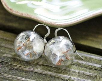 Mini Dandelion Glass Sphere dangle earrings - Glass Orb eariings - real pressed flower, botanical jewelry, gift under 45, wish