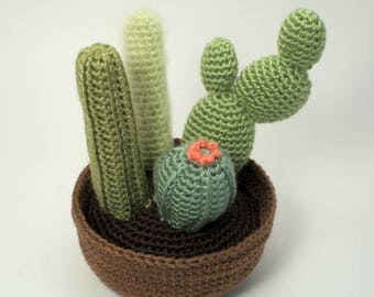 PDF Cactus Collection 2, four realistic potted plant CROCHET PATTERNS