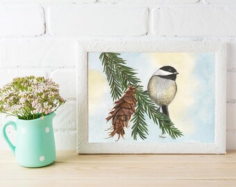 Chickadee on a Pine Branch Watercolor Print, Nature, Outdoors, birds,