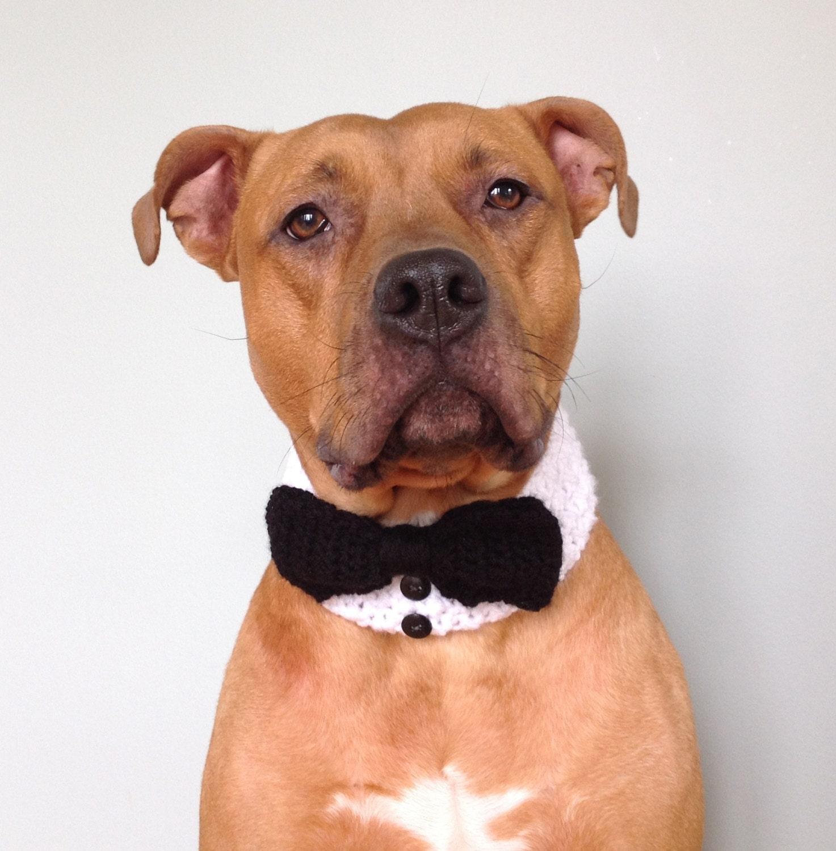 Dog Bowtie Dog Tuxedo Dog Bow Tie Wedding Dog Wedding Dog