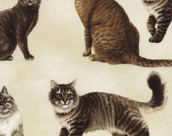 Timeless Treasures fabric CATS on Cream