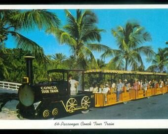 Key West Florida 64 Passenger Conch Tour Train Island City  Photo Postcard (14620)