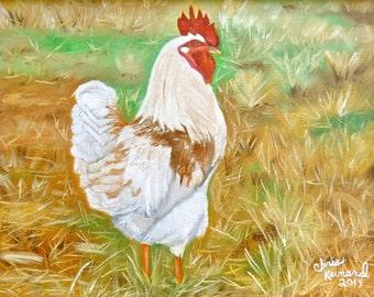 Chicken #1: Original Oil Painting