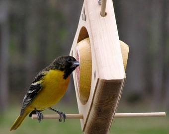 Fruit/Suet Bird Feeder
