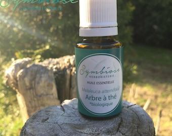 Tree tea, tea tree essential oil 15 ml