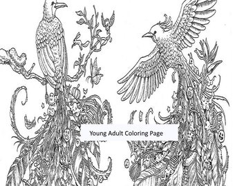 Animal Coloring Page Item 26 Birds Animorphia Printable Instant Download Adult