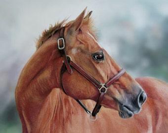 TANDY - fine art horse print from original pastel painting, chestnut horse giclee horse print equine home decor quarter horse