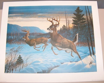 "7967: RC Kray ""Twin Trophies"" Deer Signed and Numbered LE Print Vintage Lithograph Fine Art at Vintageway Furniture"