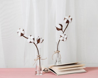 A Dried Cotton Flower Stem with 3 Bolls in Flared Glass Vase/ Bud Clear Vase Set with Artificial Cotton Spray Branch