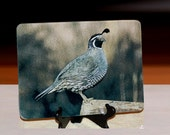 Glass Cutting Board - California Quail 7.75in x 10.75in
