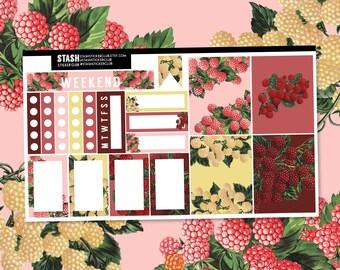 RASPBERRY KISSES - Mini Planner Sticker Kit - Erin Condren