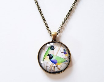 Gouldian finch, 30mm round pendant in silver or antique bronze, includes complimentary chain