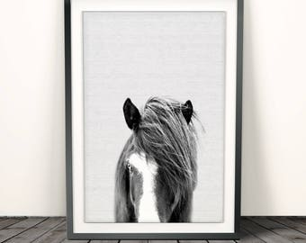 Horse Print, Black and White Photography, Horse Print Wall Art, Wild Horse Photo, Wilderness Print, Equestrian, Printable Art, Horses Face
