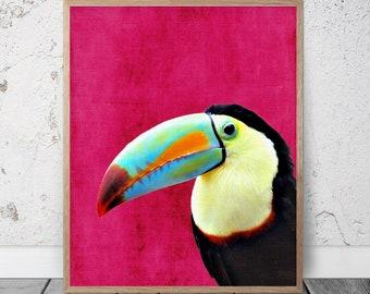 Toucan Picture, Tropical Birds Wall Art, Toucan Print, Tropical Bird Print, Toucan Photo, Toucan Art, Tropical Print, Bird Digital Print