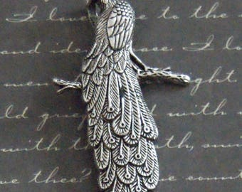Large silver-plated 32x59mm Peacock pendant charm