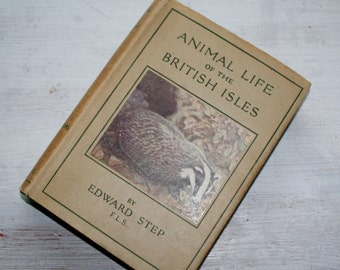 Vintage nature book. Animal Life of The British Isles. Edward Step. 1942 Beautifully illustrated.