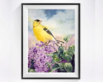 American Gold finch Print Small Bird Art - PRINT of a Watercolor Painting - wildlife art nature animal art nature art