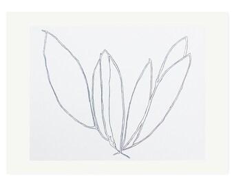 large plant drawing screenprint, minimal, modern monochrome botanical on gorgeous printmaking paper by Emma Lawrenson