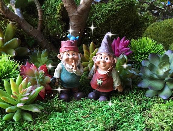 Gnome Garden: Fairy Garden Gnome Couple Miniature Garden Gnome Miniature
