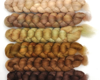 Hand dyed roving -  Blue Faced Leicester (BFL) wool spinning fiber - 6.2 ounces - Old Dog