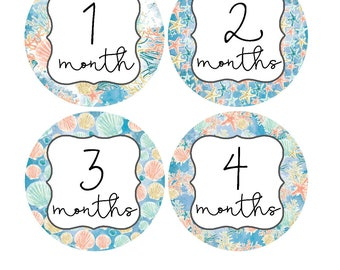 Milestone Stickers, Baby Month Stickers, Monthly Stickers, Monthly Baby Sticker, Baby Shower Gifts, Baby Month Sticker Girl, G15