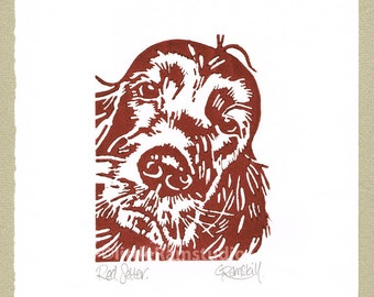 Red Setter Dog - Linocut Original hand pulled Relief Print