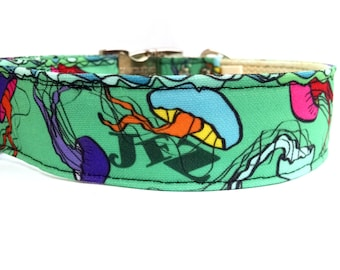 Colorful Jellies - Eco Friendly Dog Collar