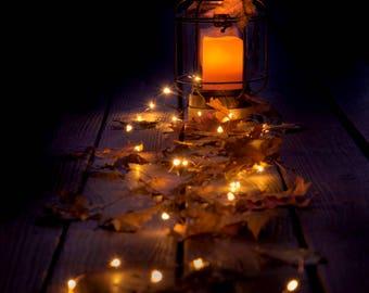 Lantern photo, fall leaves photo, fairy lights art, lantern glow print, autumn wall art, fall leaves print, rustic home decor, log cabin art