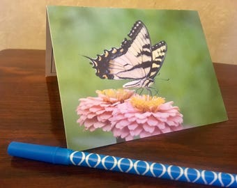 10 Note Cards (blank inside with border)