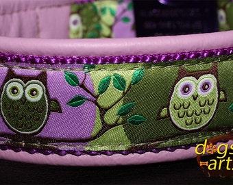 "Dog Collar ""Owl"" by dogs-art, owl, buckle collar, leather dog collar, dog collar leather, dog collar, boy dog collar, girl dog collar"