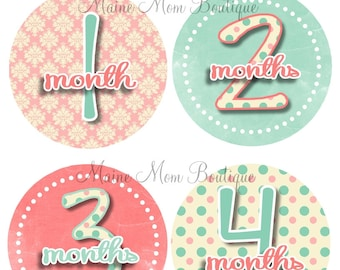 GIFT Baby Girl Monthly Stickers Month Sticker Baby Shower Gift Milestone Stickers Photo Prop Baby Shower Gift