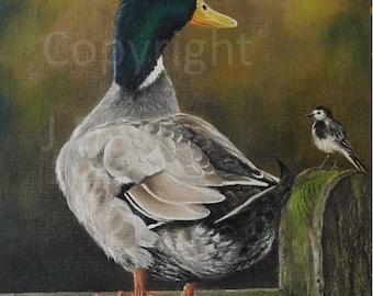Duck painting, Duck print, duck artwork, mallard print, mallard picture, duck art print