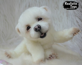 Umka - polar bear cub -