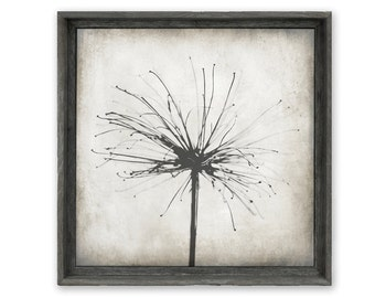 Art Print, Wall Decor, Urban Farmhouse, Framed Art Canvas Print, Neutral Decor - Nature's Sparkler