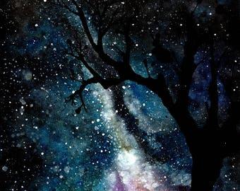Cats Down Under the Stars- JGB print