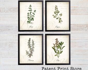 Herb Botanical Art Prints. Herb Prints. Herb Wall Art. Botanical Print. Kitchen Art Prints. Dining. Botanical Wall Art. Farmhouse Decor. 124