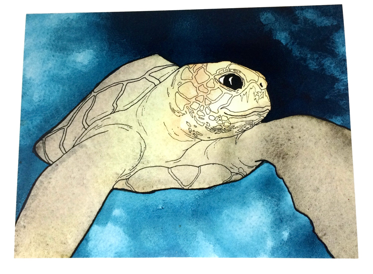 Sea Turtle Art Beach Themed Wall Art Beach House Decor