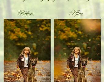 163 Fall Autumn Leaf Overlays, Falling Leaf Overalys and Leaf Borders