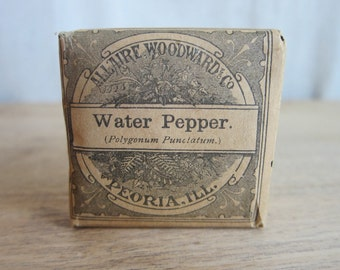 Vintage Advertising, Apothecary Drugstore Water Pepper Packet by Allaire Woodward and Co, Unopened