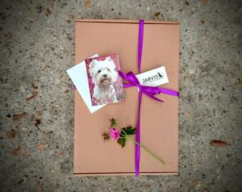 Dog Birthday Hamper | Dog Treats | Luxury Dog Birthday Gift | Grain-free | Gluten Free | Personalised Dog Birthday Box