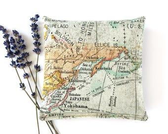 World Map Lavender Pillow, Travel Gifts, Geography Decor, Large Lavender Sachet Pillow