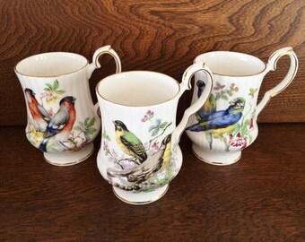 ROYAL WINDSOR CHINA Mugs - Birds - Blue Green Parakeet - Rose Breasted Grosbeak - Songbird