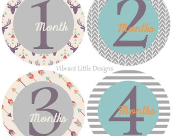 Deer & Arrow Baby Boy Monthly Stickers, Milestone Stickers, Month Stickers, Baby Month Stickers, Baby Stickers #56